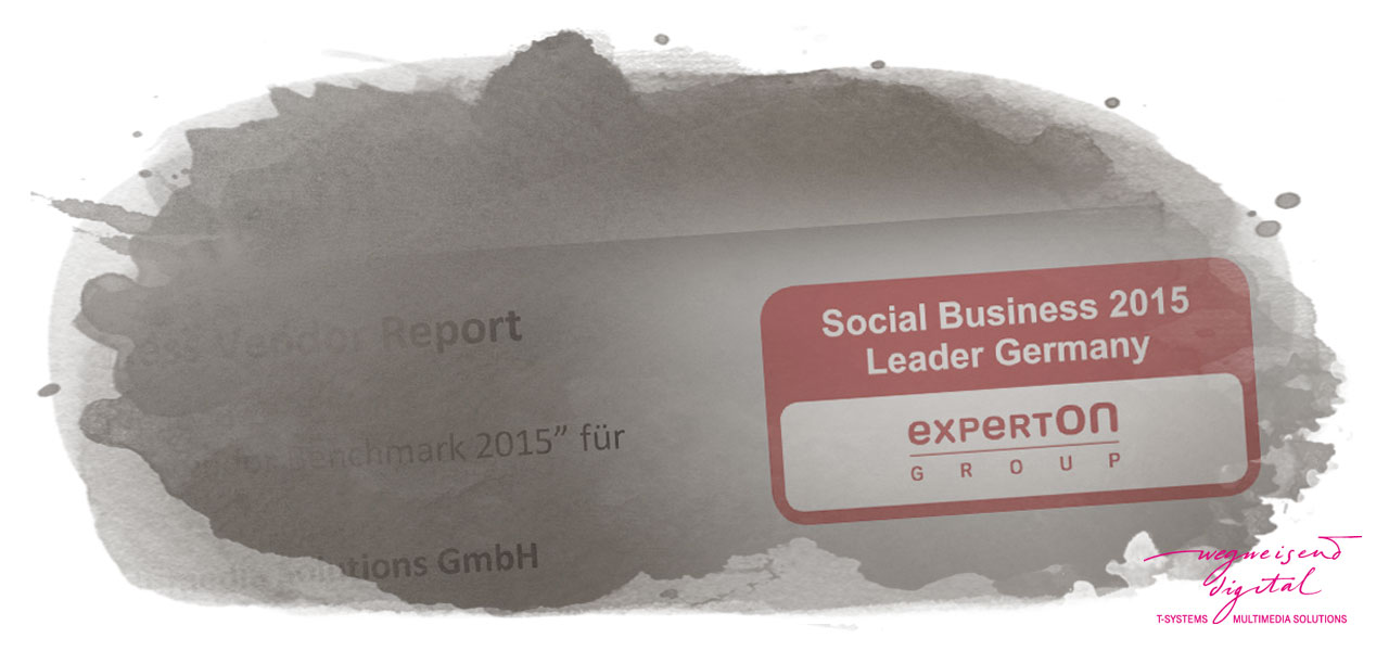 Grafik: Social Business Vendor Benchmark 2015